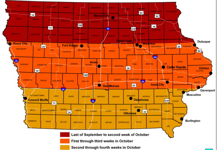 Post Photo for Iowa Fall Colors Guide