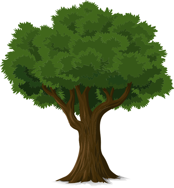 Post Photo for Today Is Arbor Day!